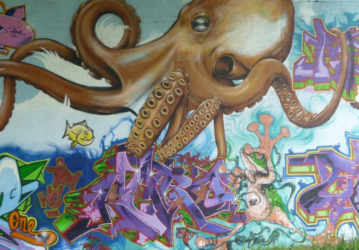 Wallpaper Gurita Coretan Seni Jalanan Lukisan Dinding