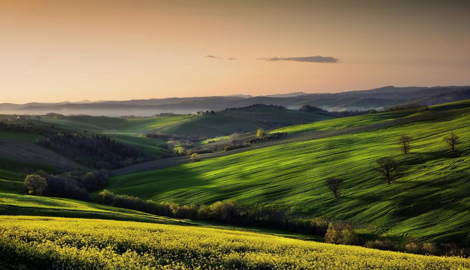 поля и долины картинки широком понимании стукалкой