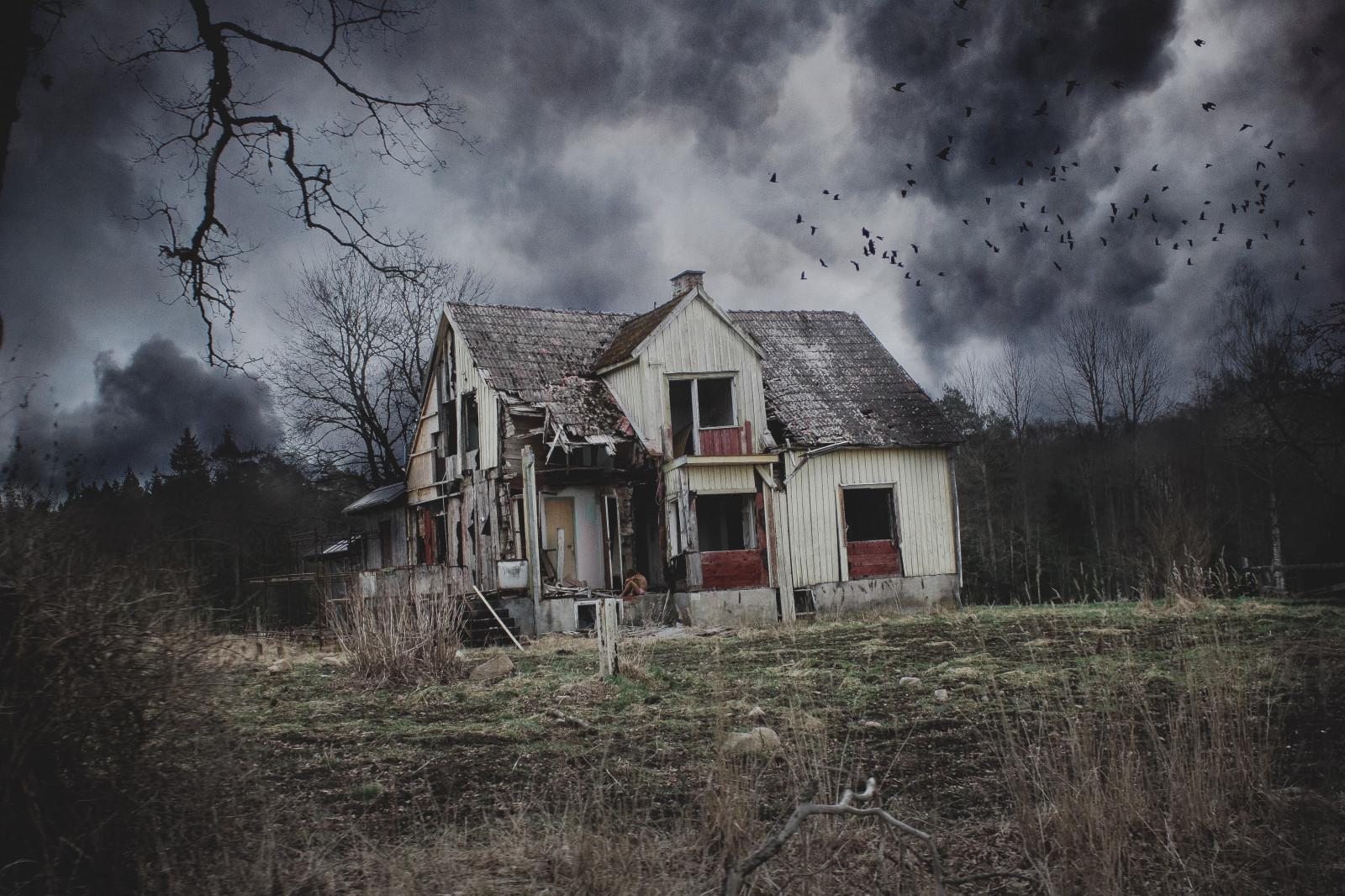 Fond d'écran : paysage, des oiseaux, vieux, foncé, terrifiant, horreur, bâtiment, ciel, hiver ...