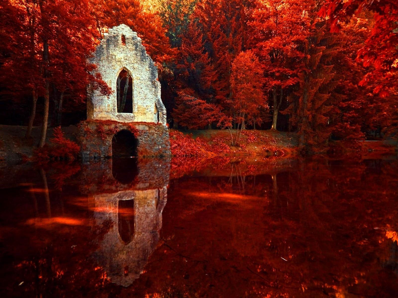 фото красной осени сделать фотошопе