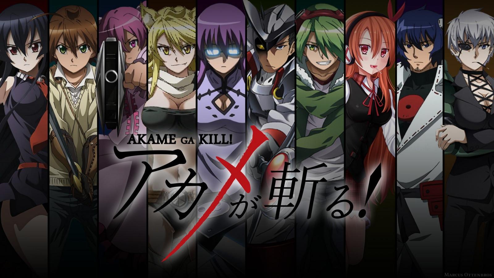 Wallpaper Anime Akame Ga Kill Comics Sheele Leone