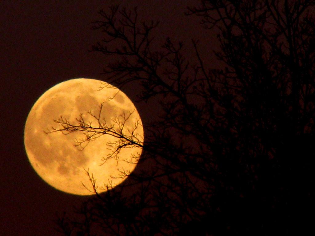 Sfondi Luna Piena Cielo Notte Oggetto Astronomico Atmosfera