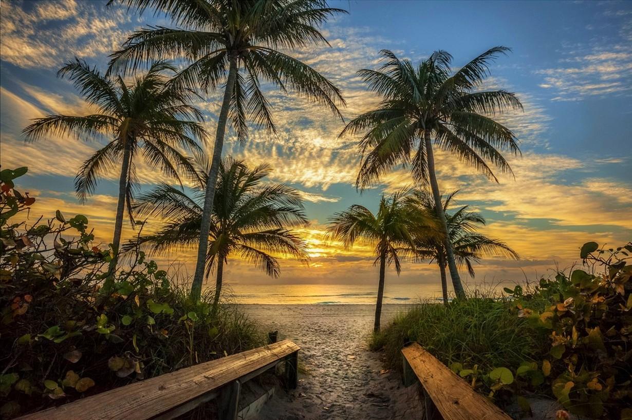 Salida Crucero West Palm Beach