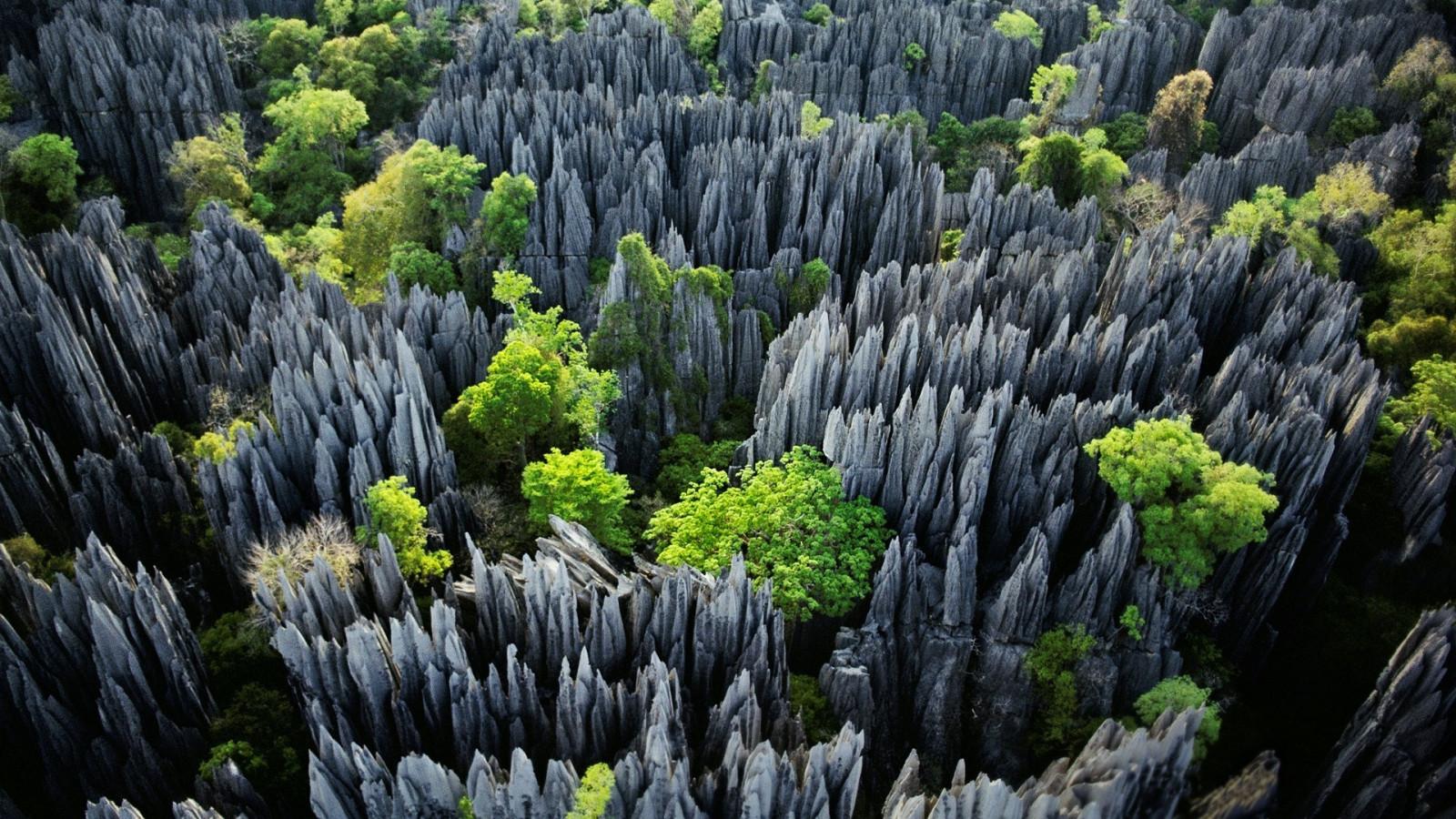 Kết quả hình ảnh cho Công viên quốc gia Tsingy de Bemaraha