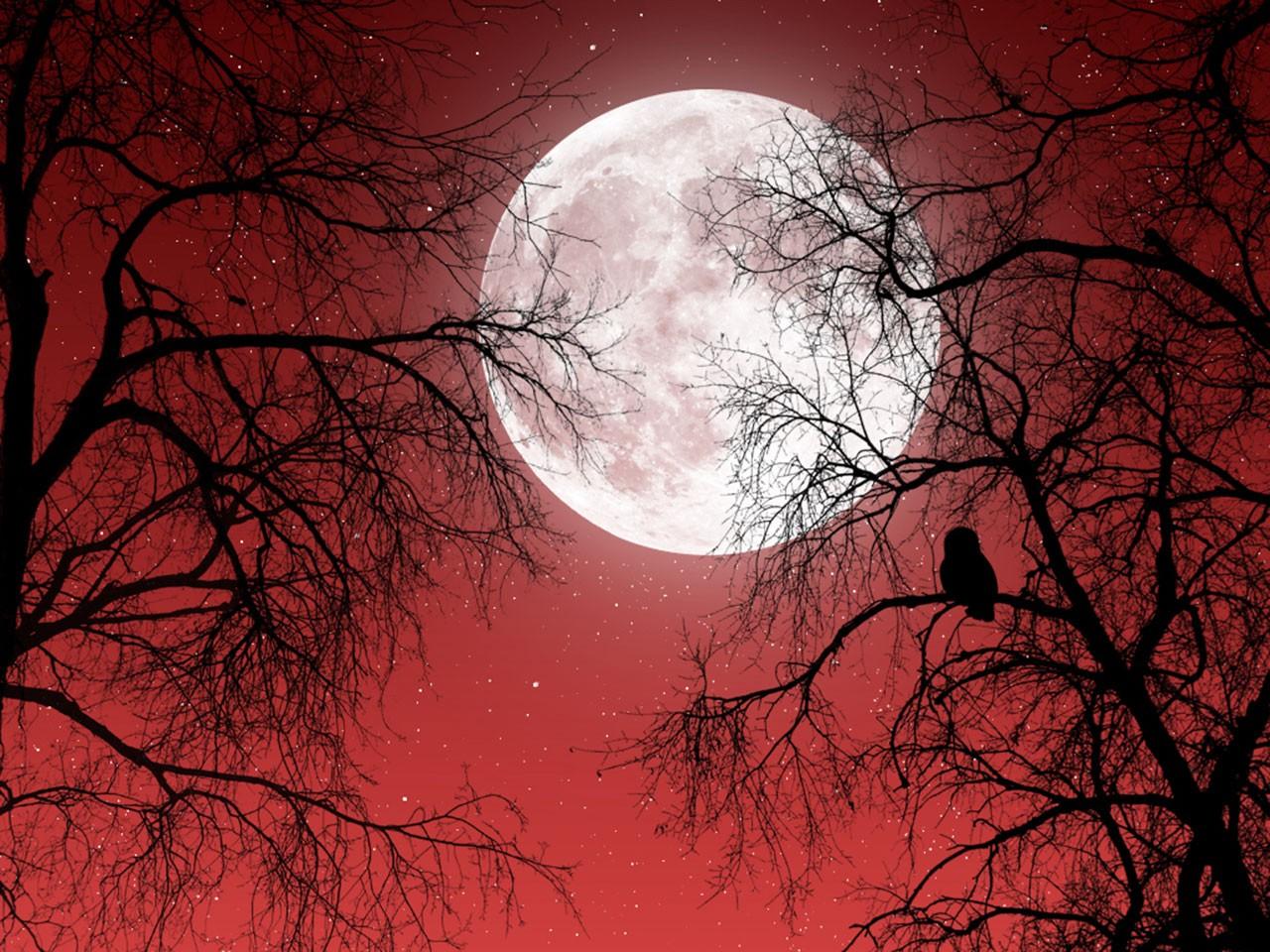 стоит картинка кровавой ночи монета