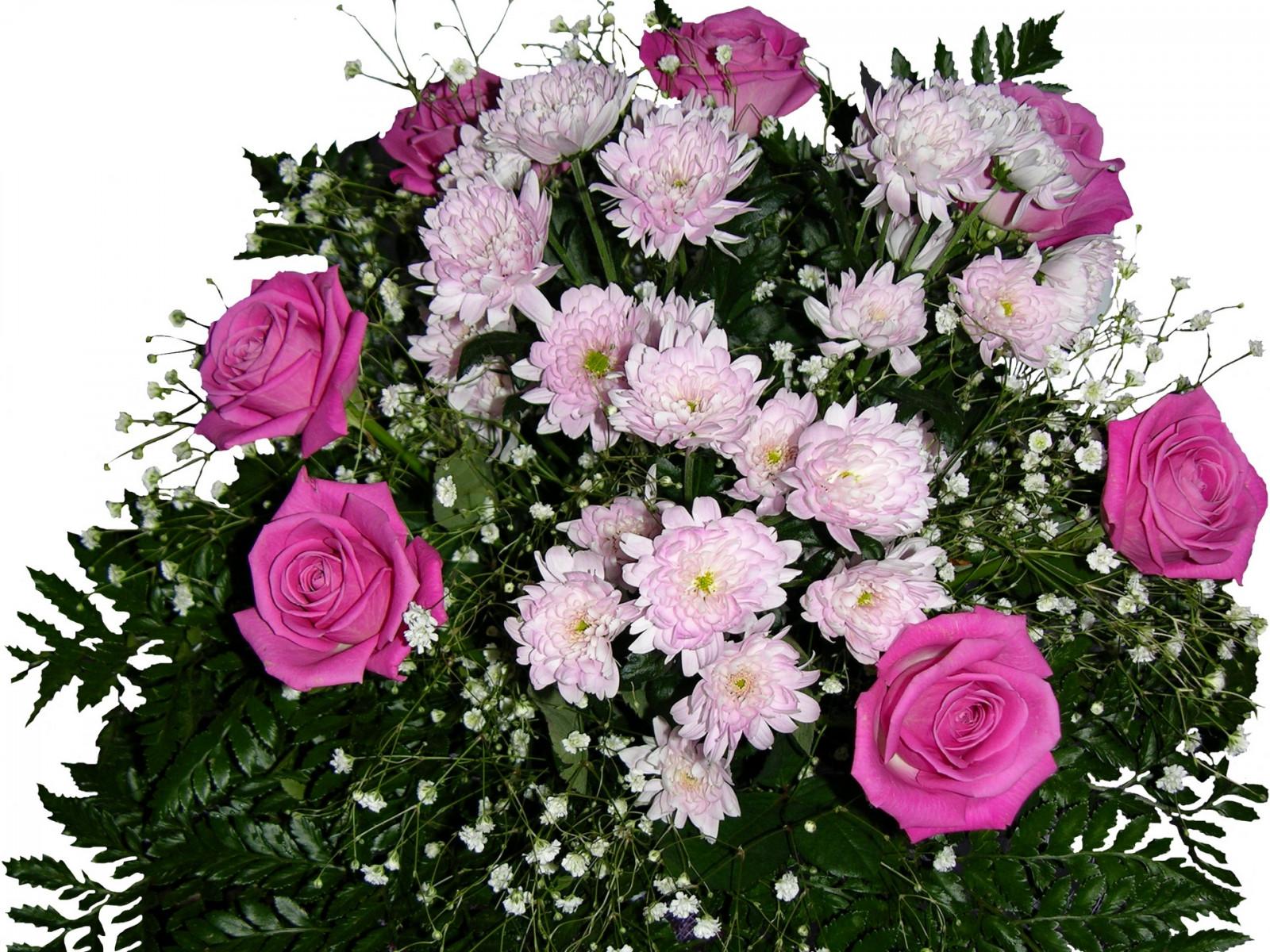 Картинка с хризантемами с днем рождения