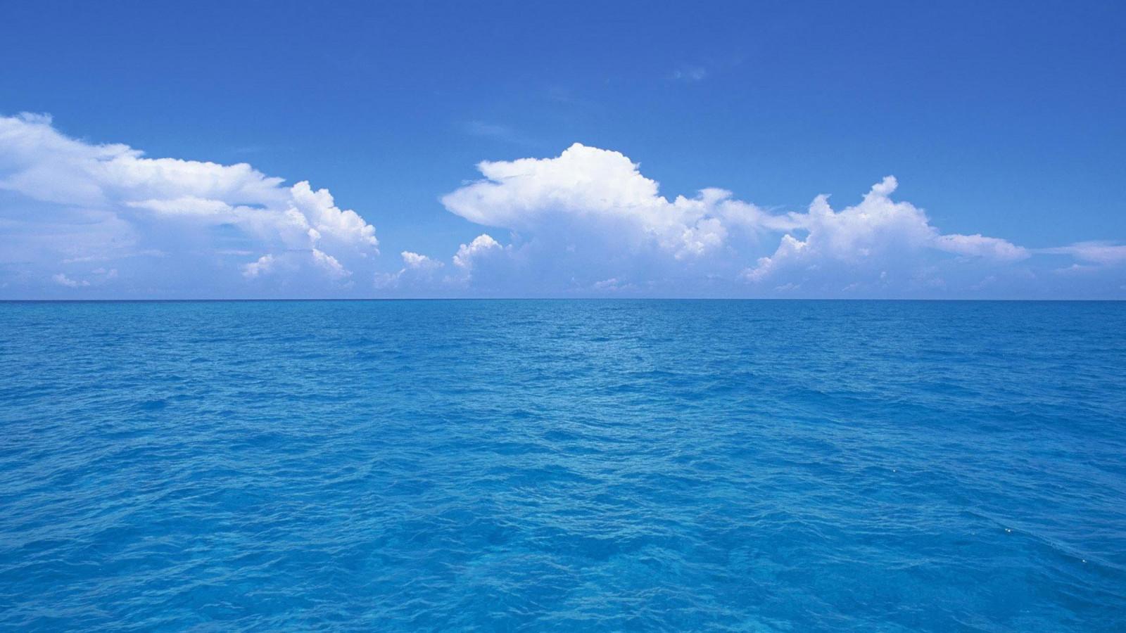 грудь маленького качественное фото красивого моря видео