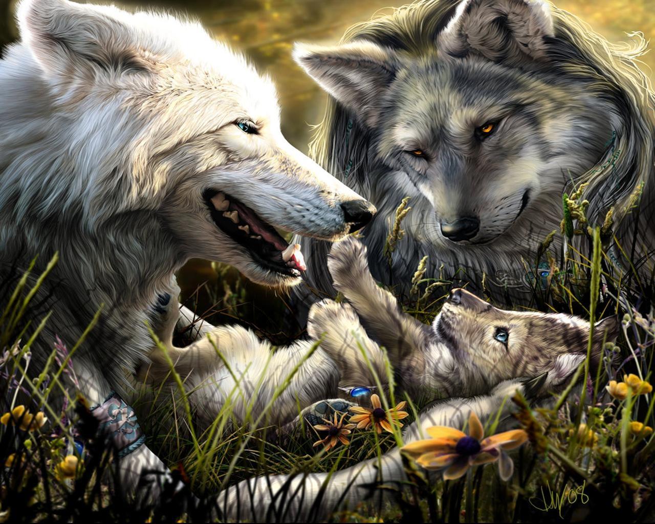 Sfondi : amore natura lupo famiglia nascita ragazzo fauna