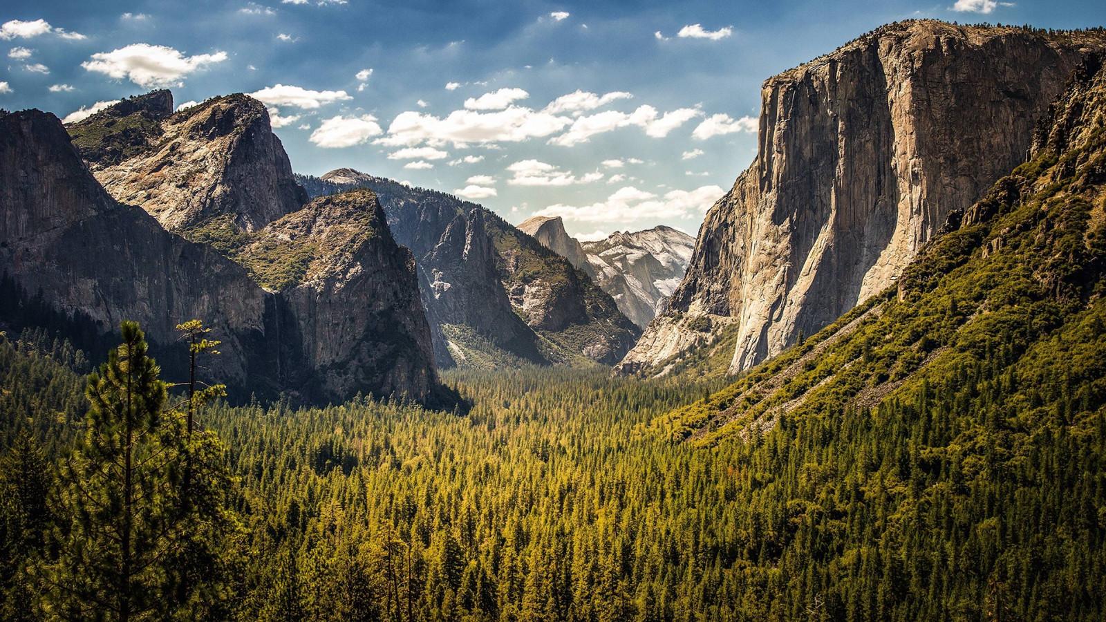 Wallpaper : trees, landscape, hill, rock, sky, clouds, cliff