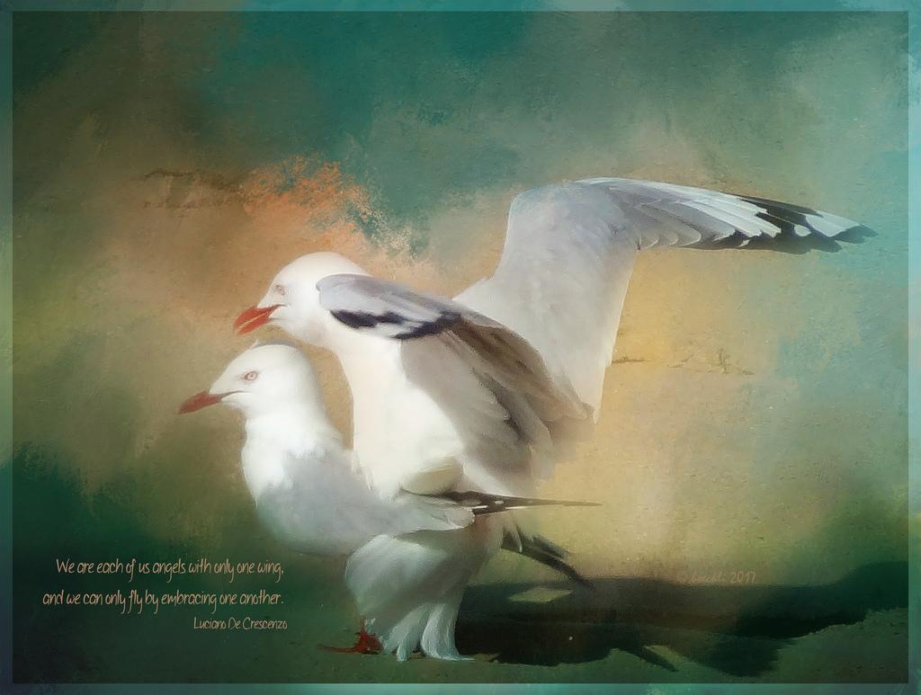 Hintergrundbilder : Malerei, Photoshop, Vögel, Natur, Himmel, Strand ...