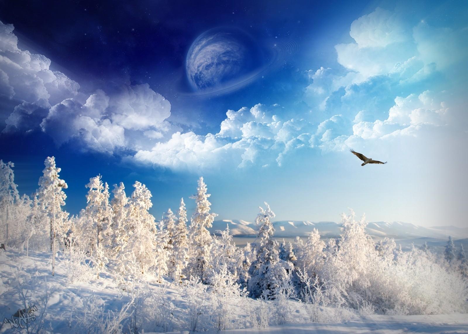 デスクトップ壁紙 日光 風景 自然 空 雪 冬 宇宙美術 霜