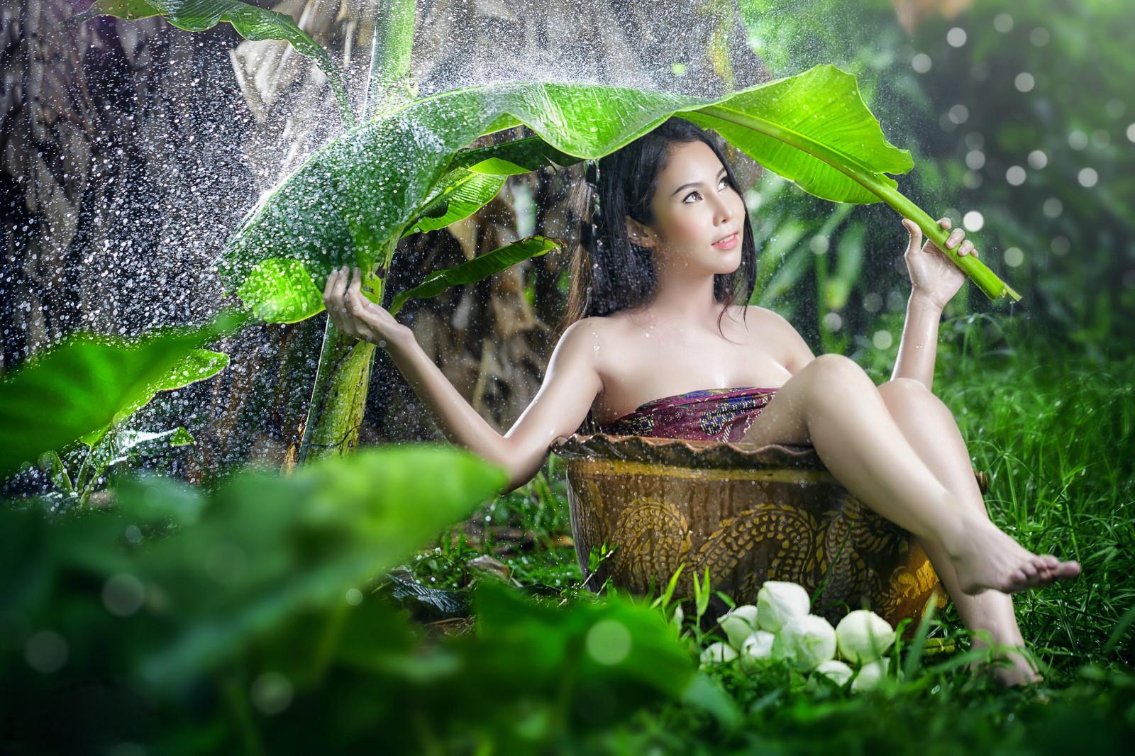 Wallpaper : sunlight, forest, leaves, women, model, nature