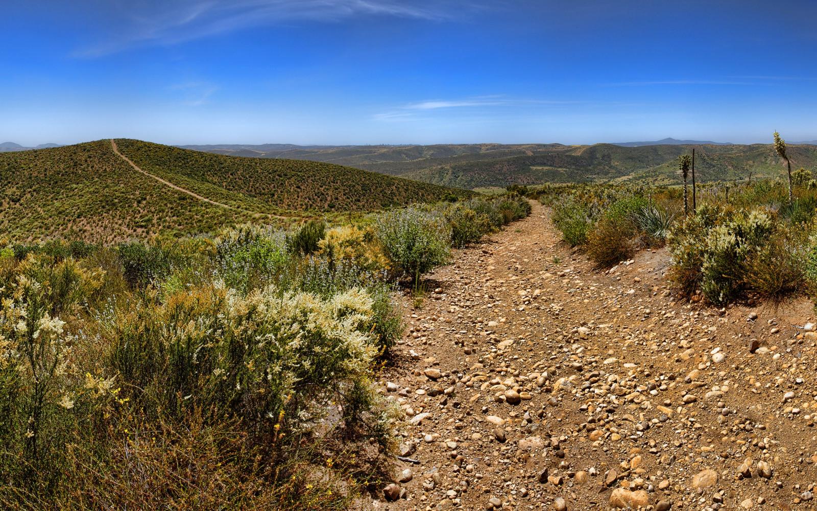 Wallpaper Pemandangan Bidang Gurun Jalan Tanah California