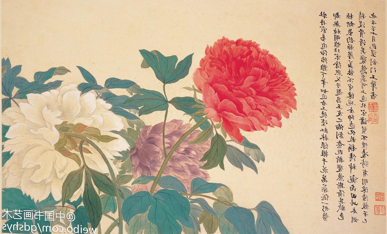 Fond D Ecran Rose Fleur Flore Petale Pivoine 1500x908 Px