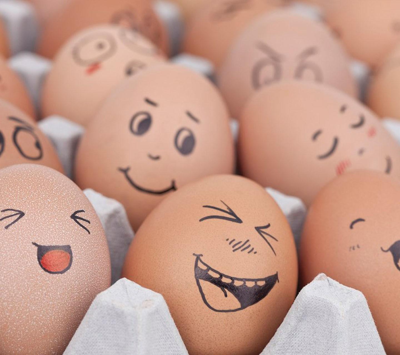 Смешные картинки с яйцами к пасхе, мишками милыми срисовки