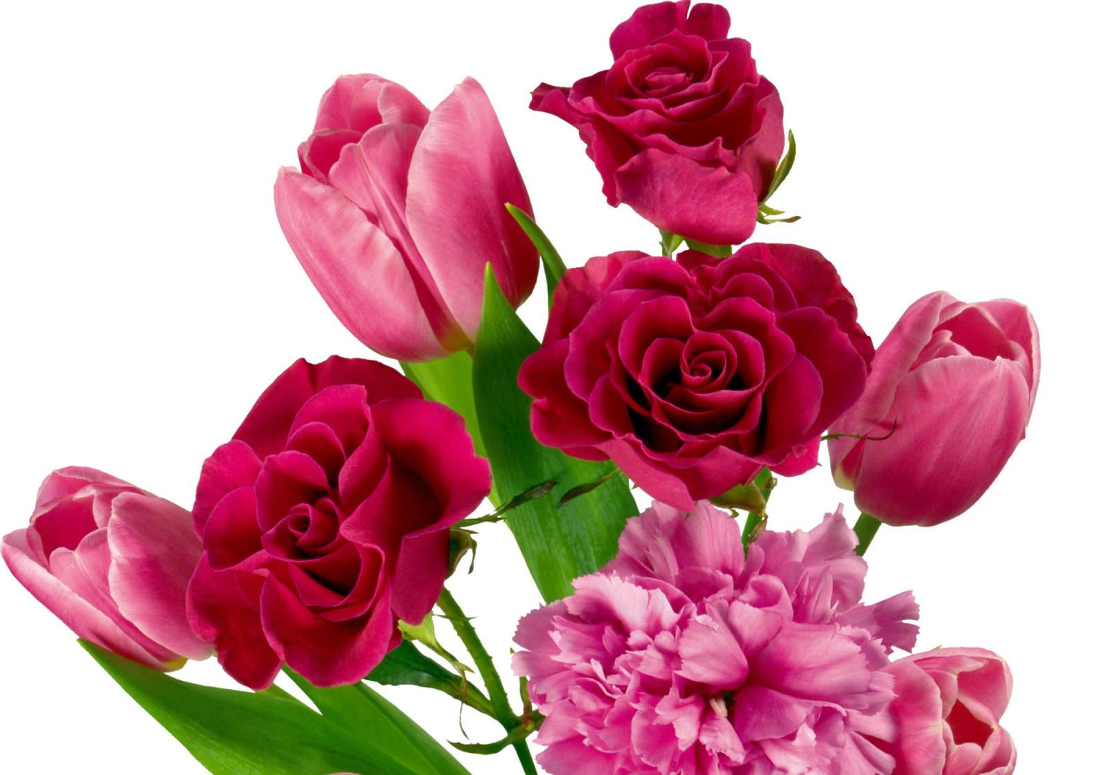Днем, картинки цветов тюльпанов и роз