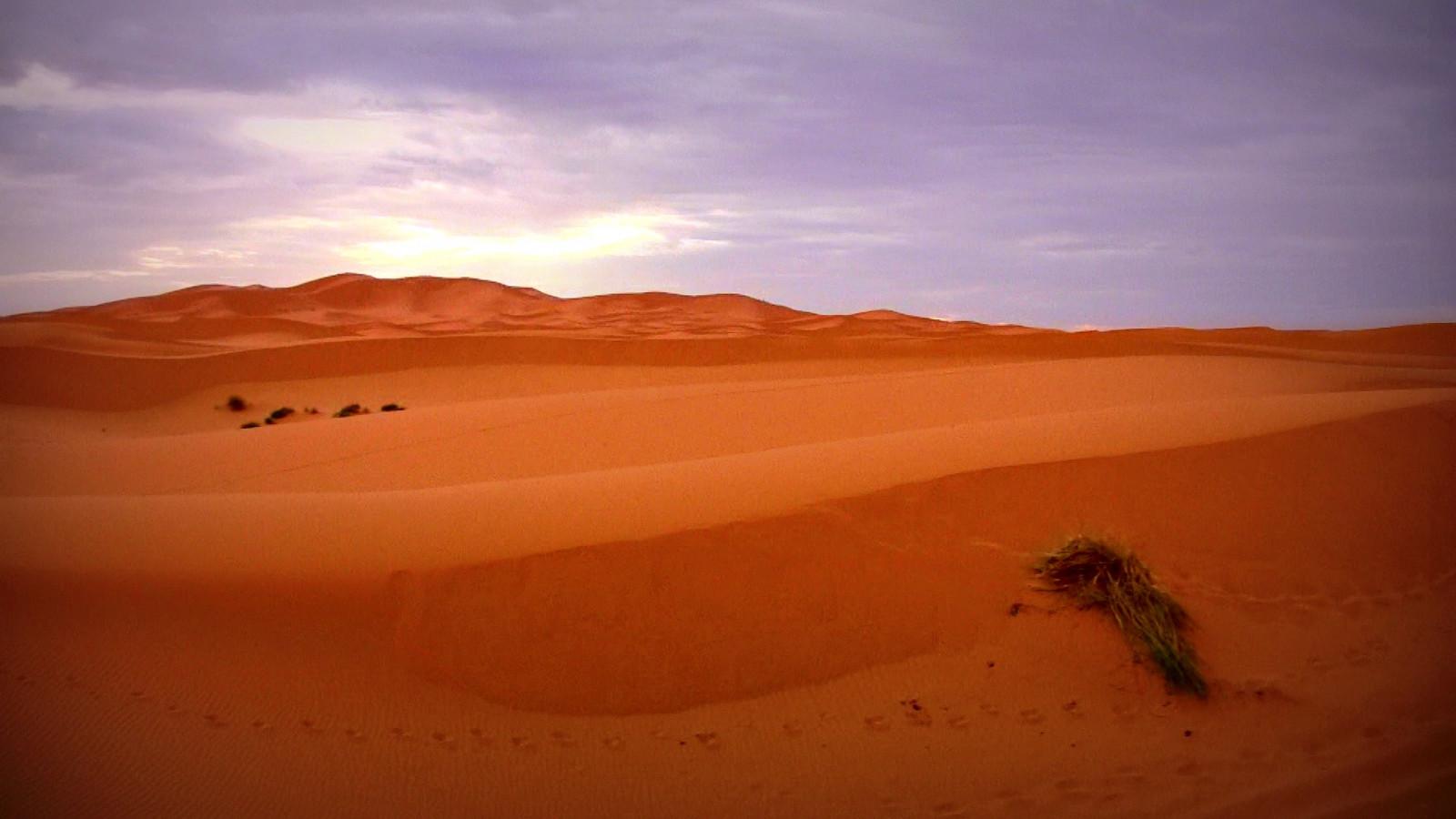 Urlaub Wüste