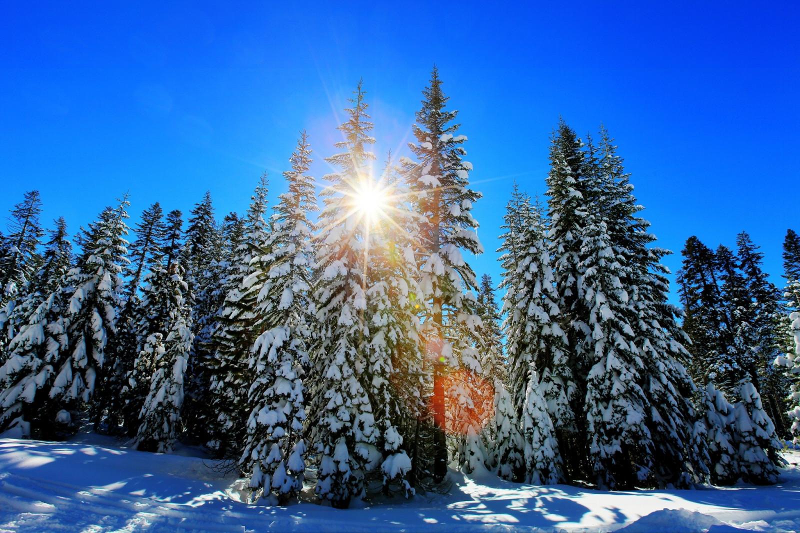 hintergrundbilder winter wald schnee licht landschaft 2048x1365 4kwallpaper 1012854. Black Bedroom Furniture Sets. Home Design Ideas
