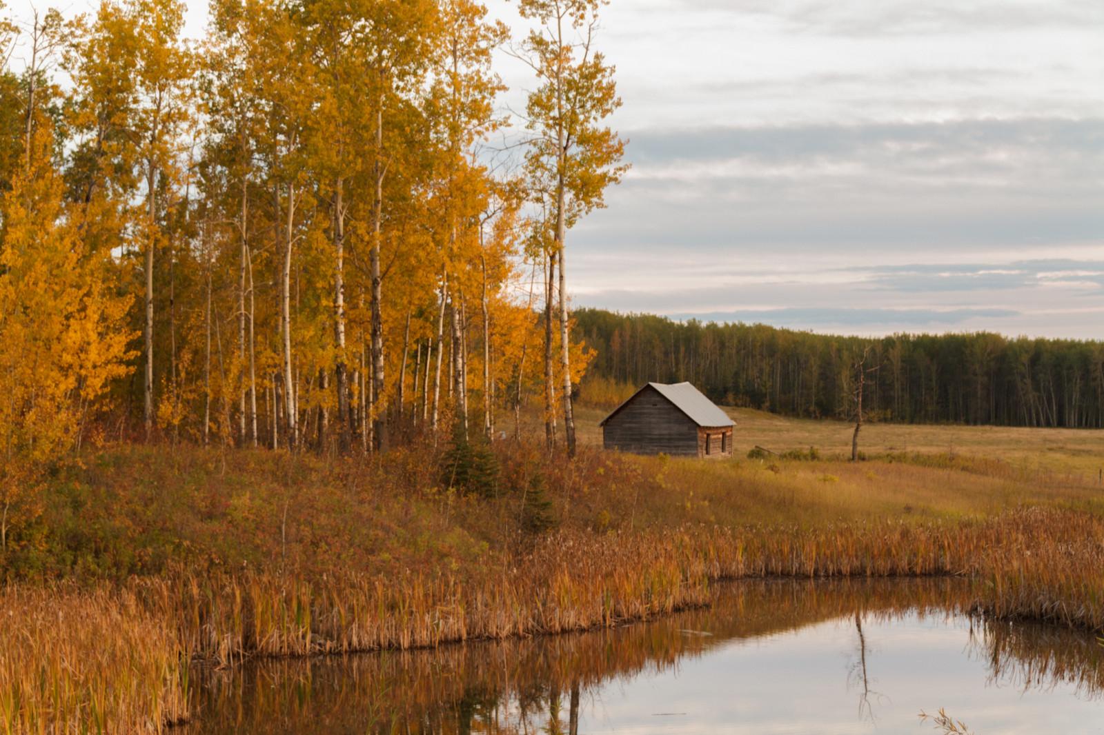 Sfondi paesaggio foresta autunno lago riflessione for Affitti cabina grande lago orso
