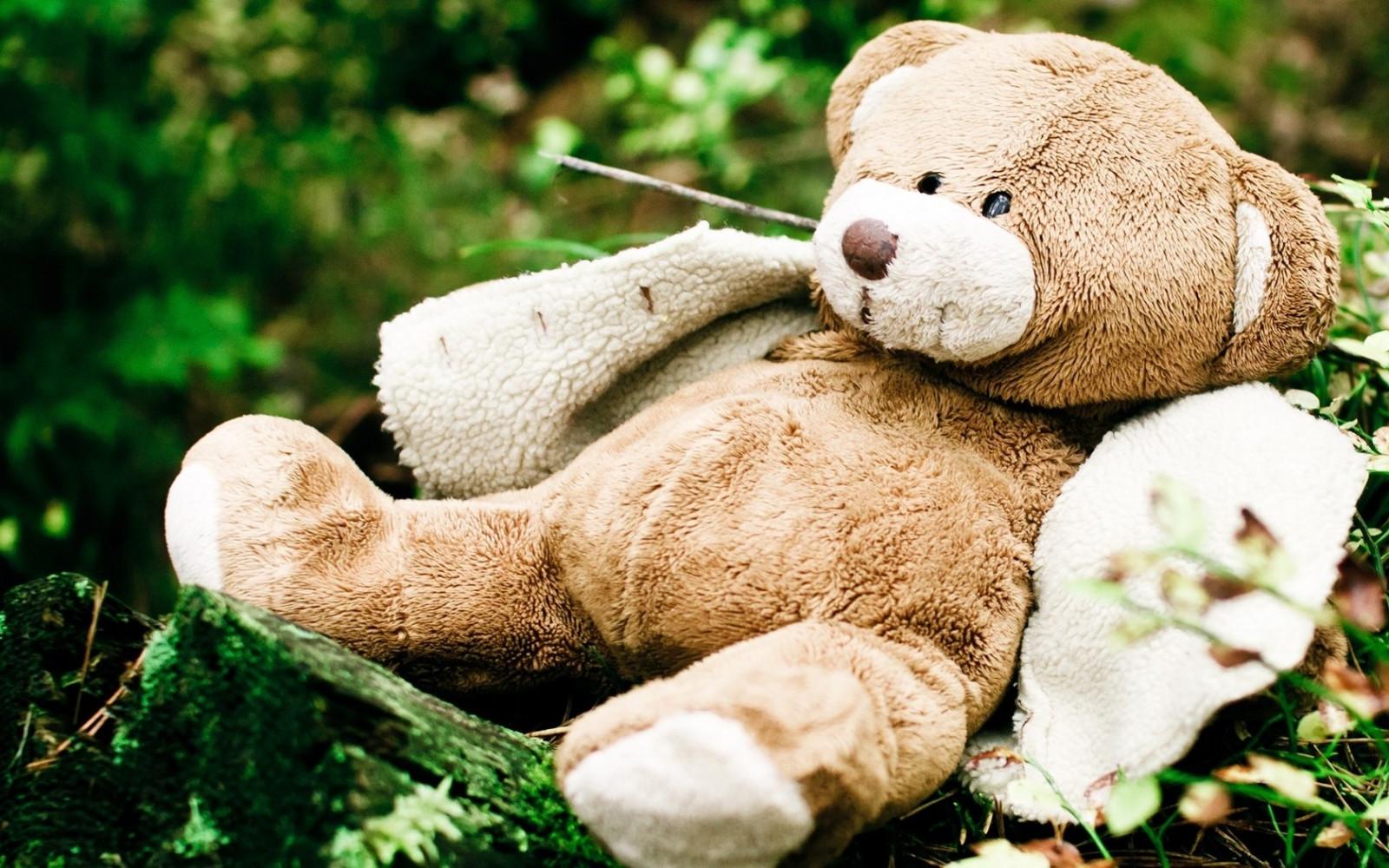 Картинки с плюшевым медвежонком красивые, словами