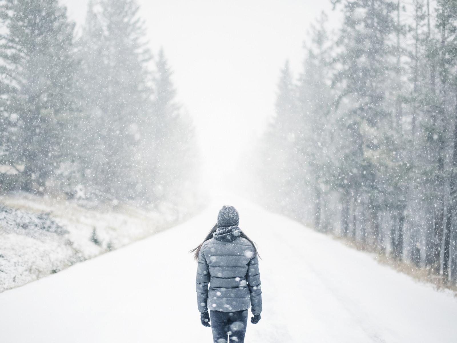 боится загрязнений, картинка одиночество снег будет состоять шести