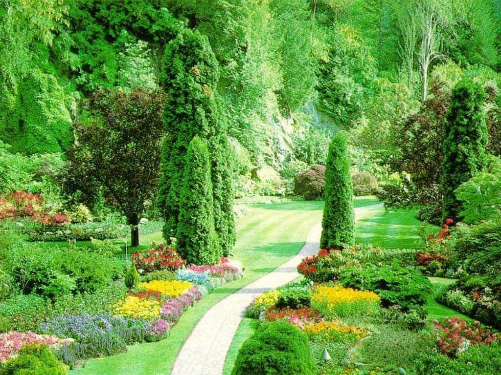 デスクトップ壁紙 風景 森林 庭園 緑 裏庭 秋 花 ヤード