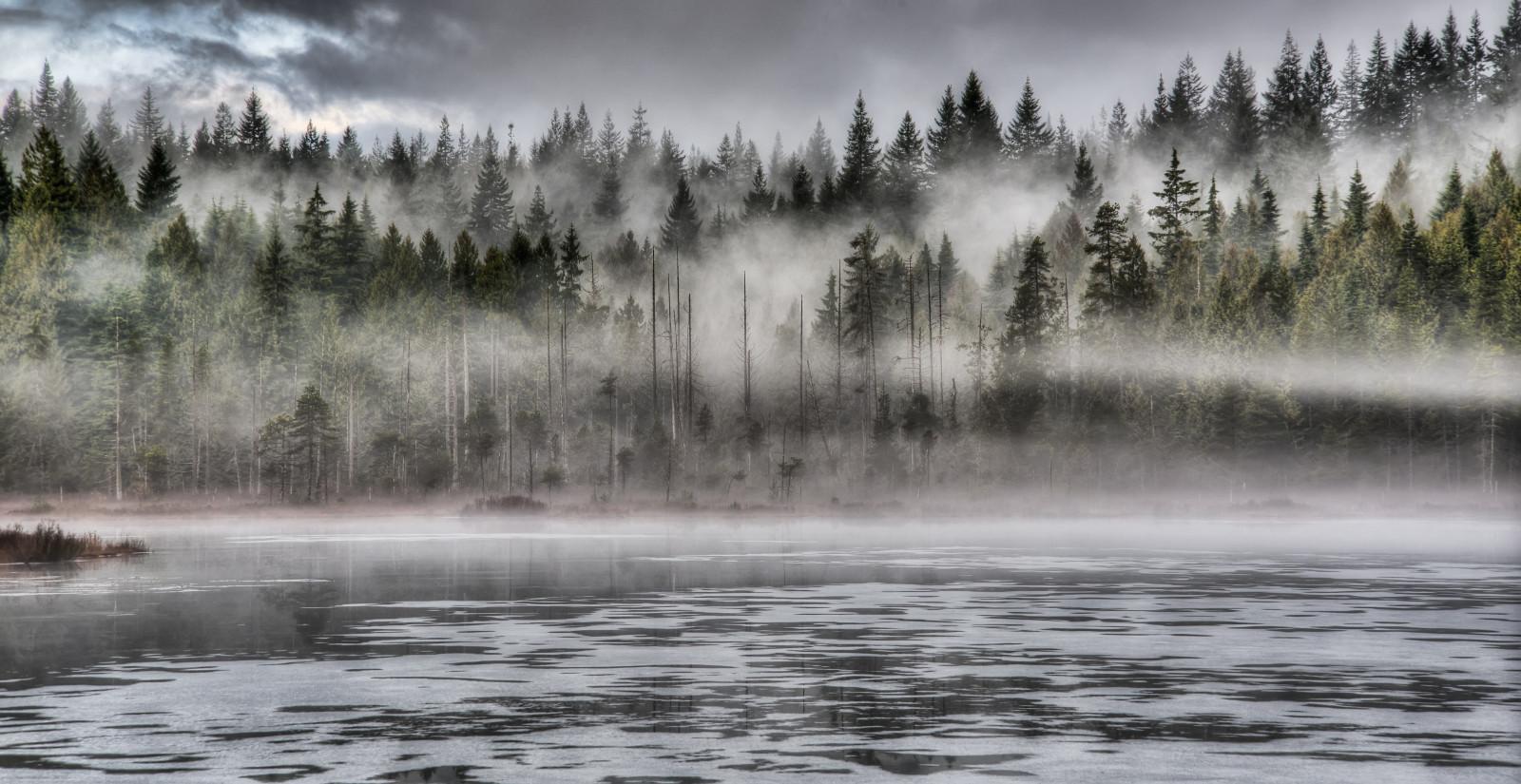 Misty Green Forest Nature River Beautiful 1ziw: Wallpaper : Park, Wood, Morning, Travel, Light, Sky, Mist