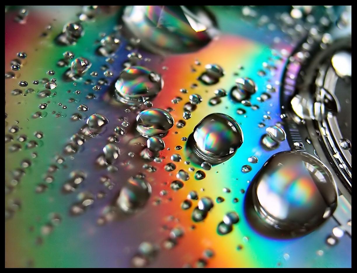 Sfondi Gocce Dacqua Avvicinamento Bicchiere Cerchio Dischi