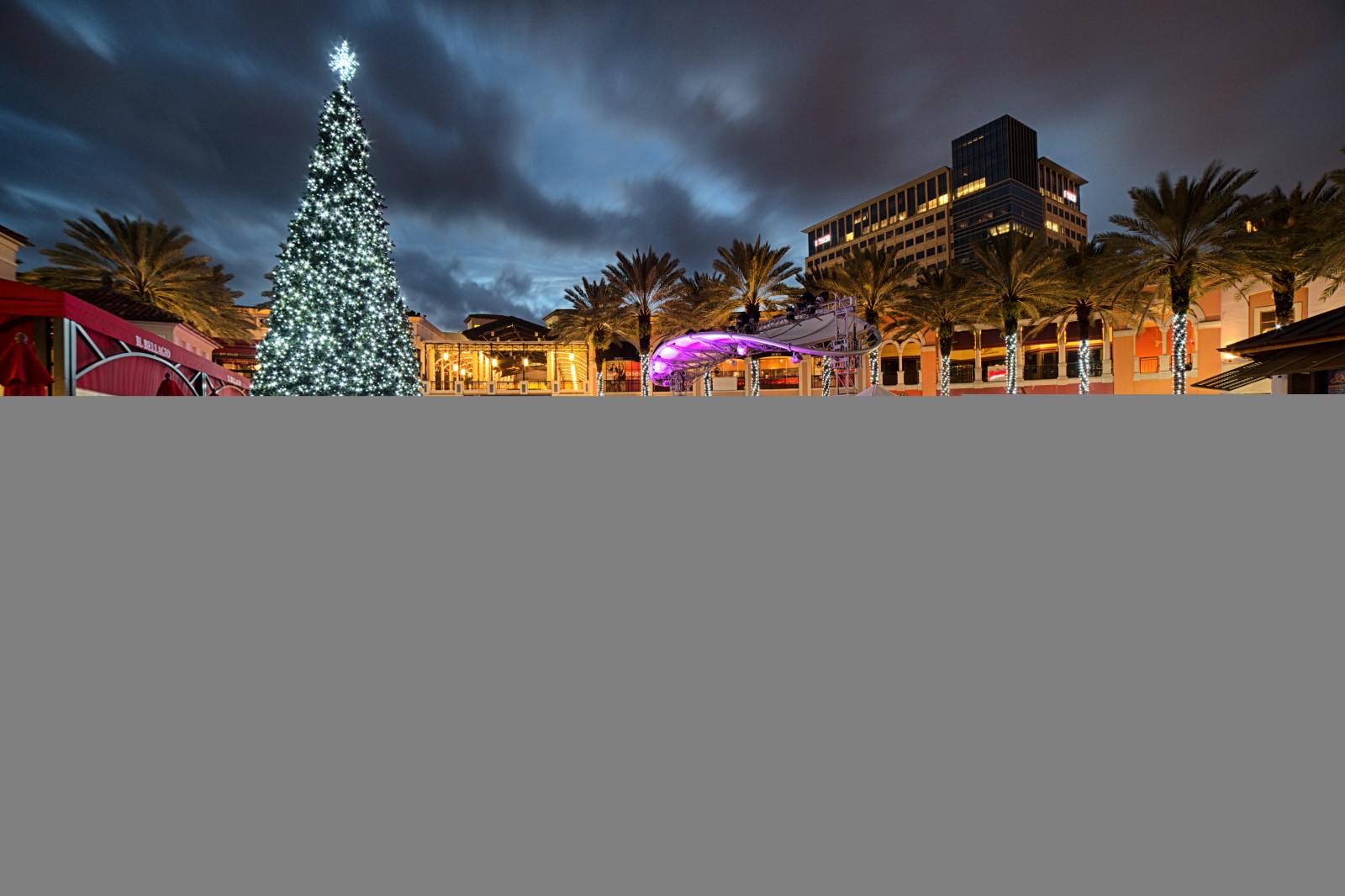 Hintergrundbilder : Landschaft, Strand, Weihnachten, Florida, County ...
