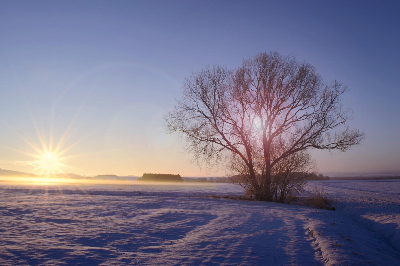 Hintergrundbilder winter wunderland herzberg deutschland sonne sonnenschein - Schneebilder kostenlos ...