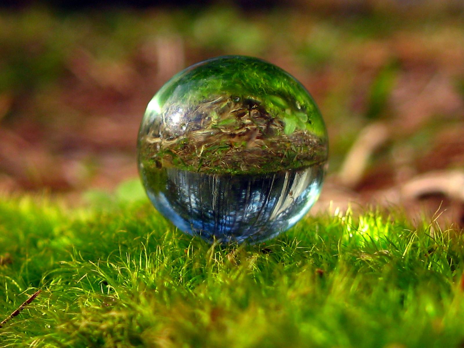 Sfondi Acqua Riflessione Erba Sfera Terra Muschio Verde