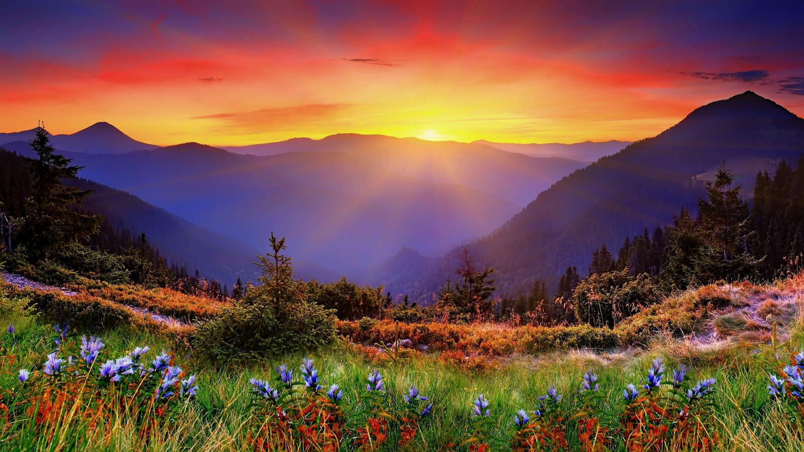 New_Zealand_landscape-46636.jpg!d