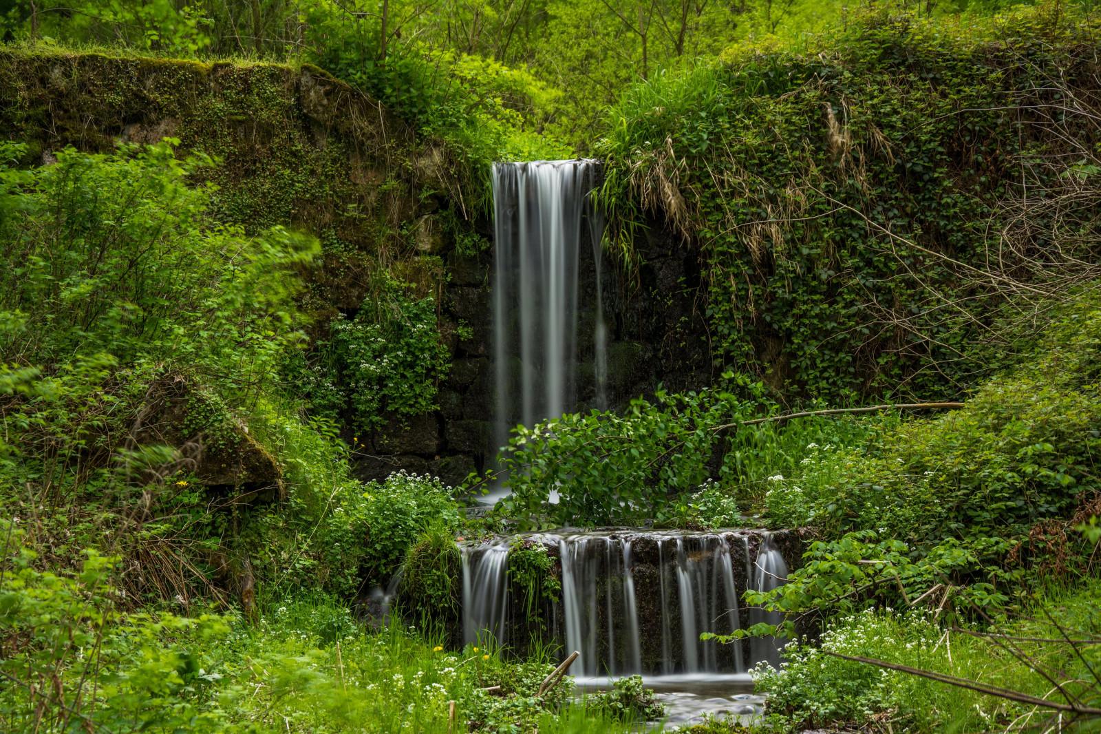 Wallpaper forest waterfall garden nature jungle for Waterfall environment