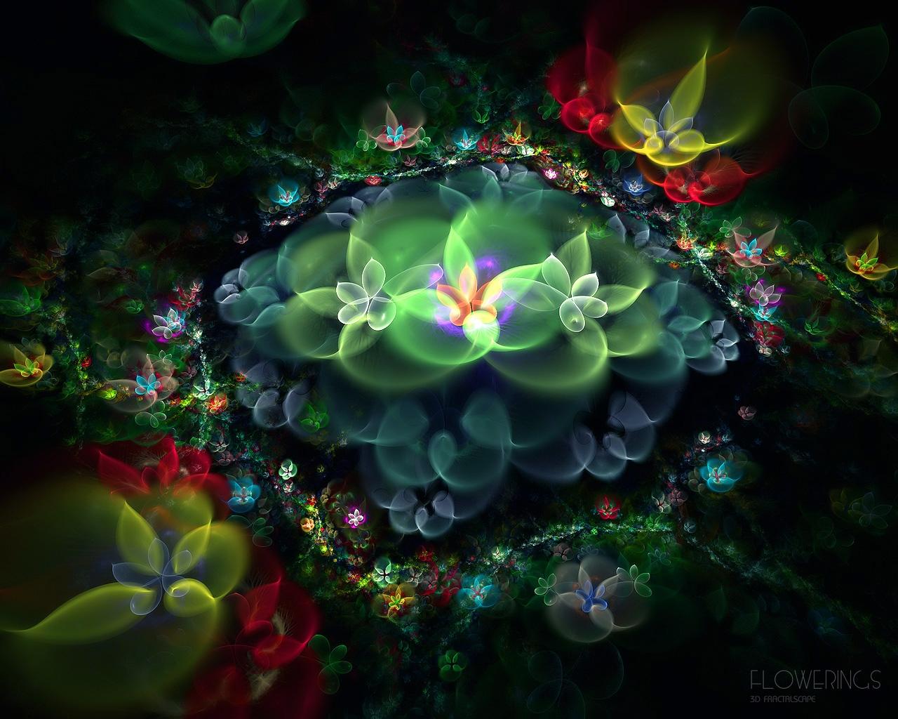 Флора зеленый стромбус лухуанус фото