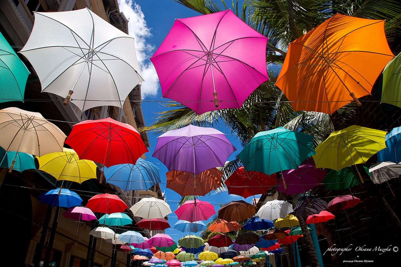 Водочкой, красивые зонтики картинки