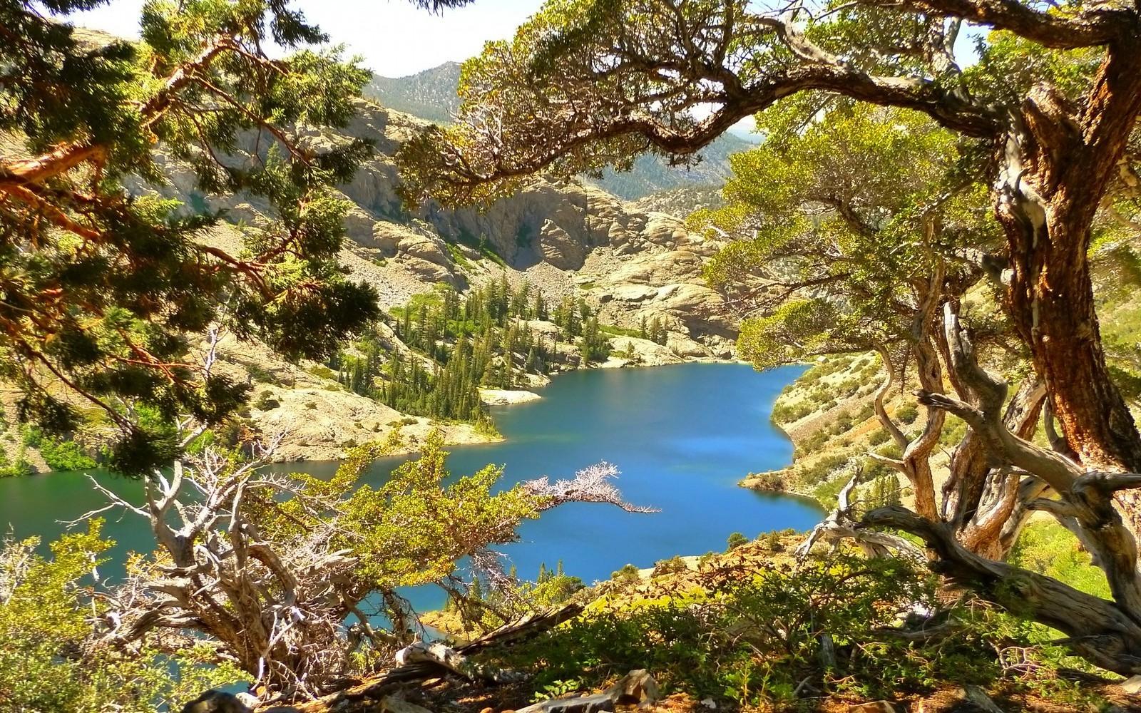 Wallpaper Trees Landscape Mountains Lake Nature