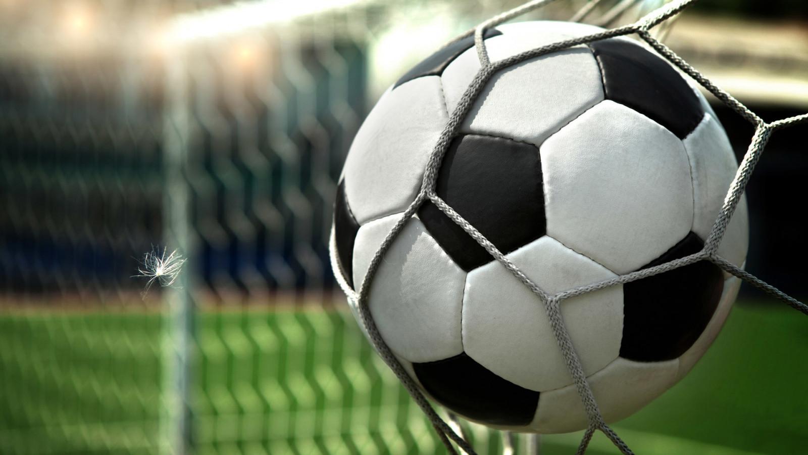 fútbol, pelota, rueda, red, fútbol, malla, jugador, equipo deportivo
