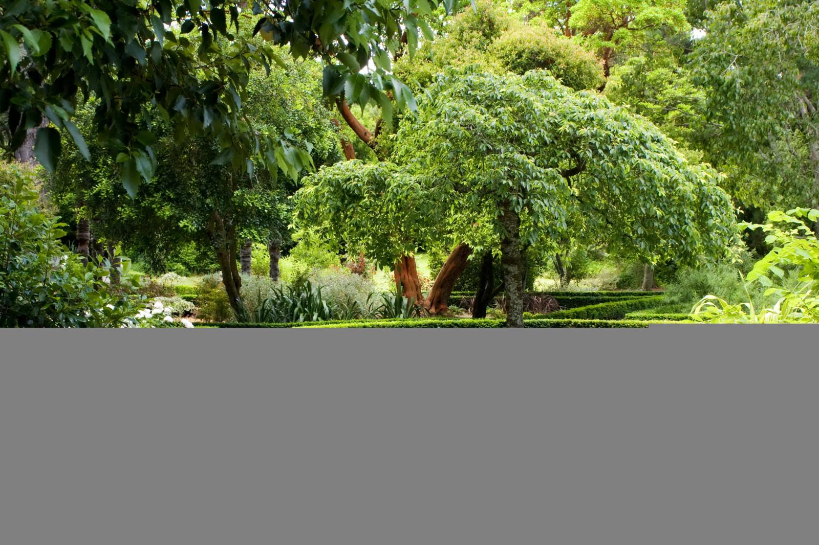 Fond d\'écran : paysage, jardin, la nature, parc, Arbustes, Nouvelle ...
