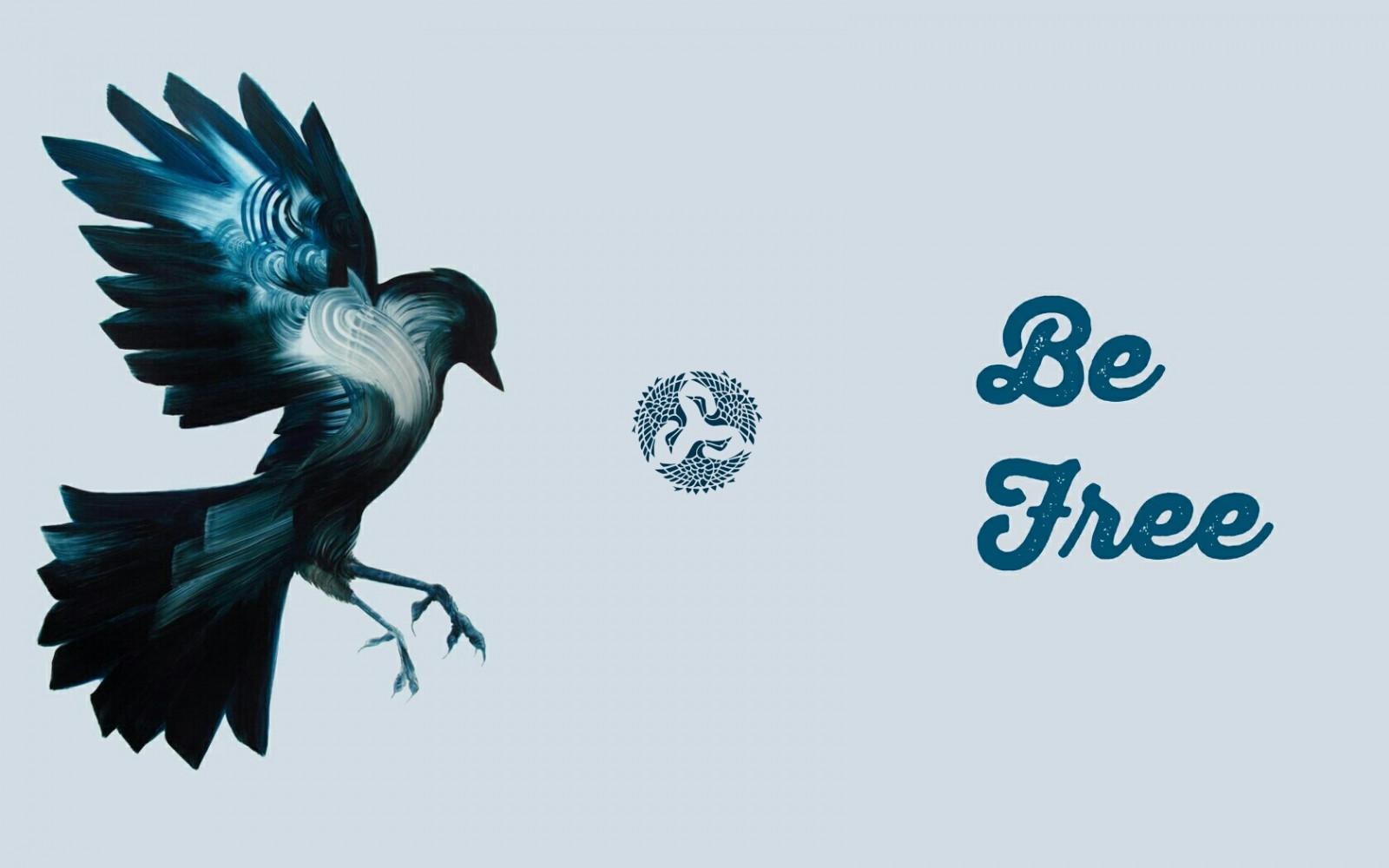 Sfondi illustrazione logo cartone animato uccello rapace