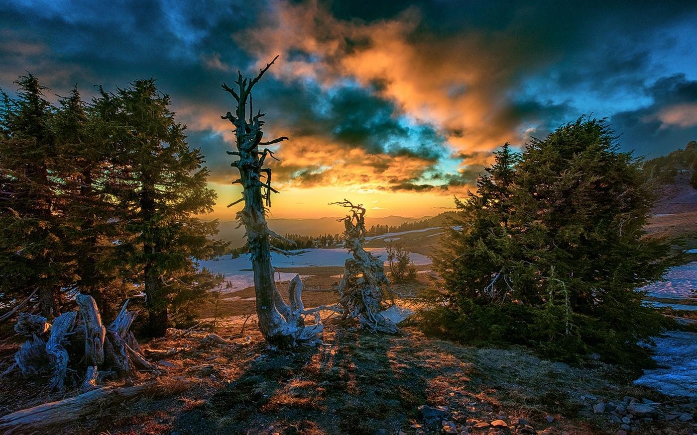 Fond d 39 cran lumi re du soleil des arbres paysage for t tomber le coucher du soleil la - Meteo lever et coucher du soleil ...