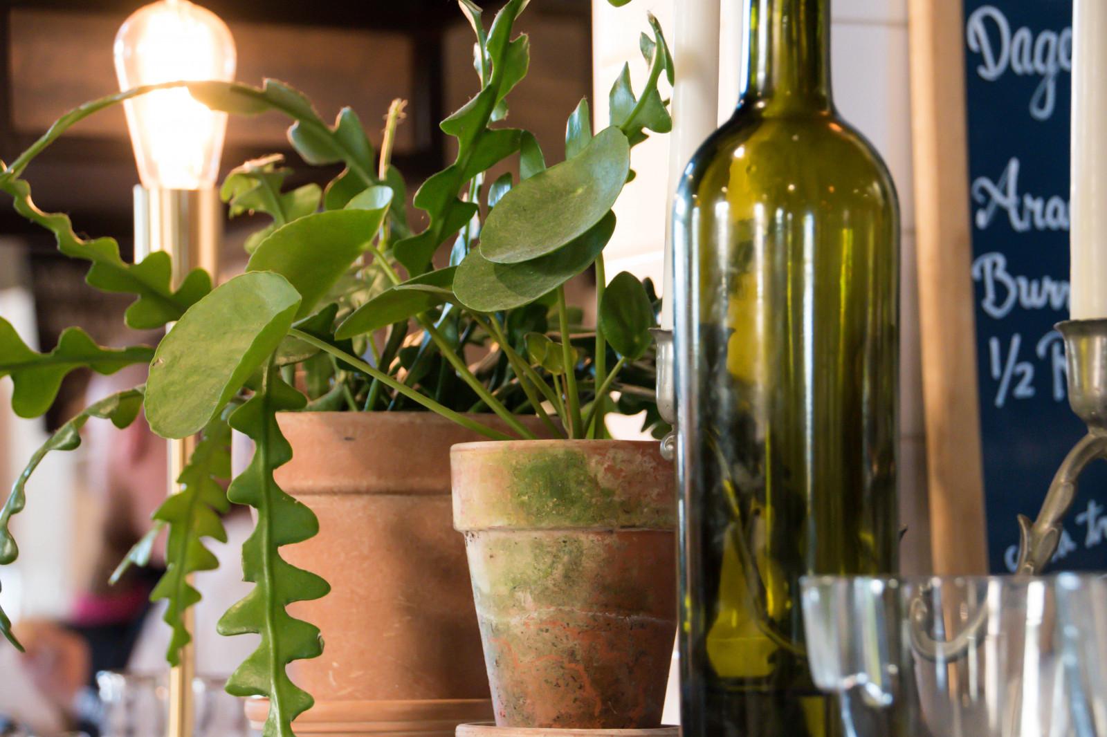 окно зеленое вино картинки снова пополнение