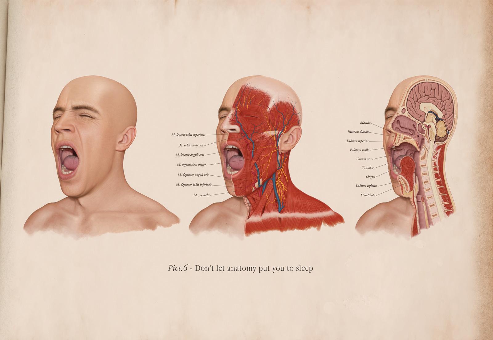 Hintergrundbilder : Gesicht, Zeichnung, Illustration, rot, Nase ...