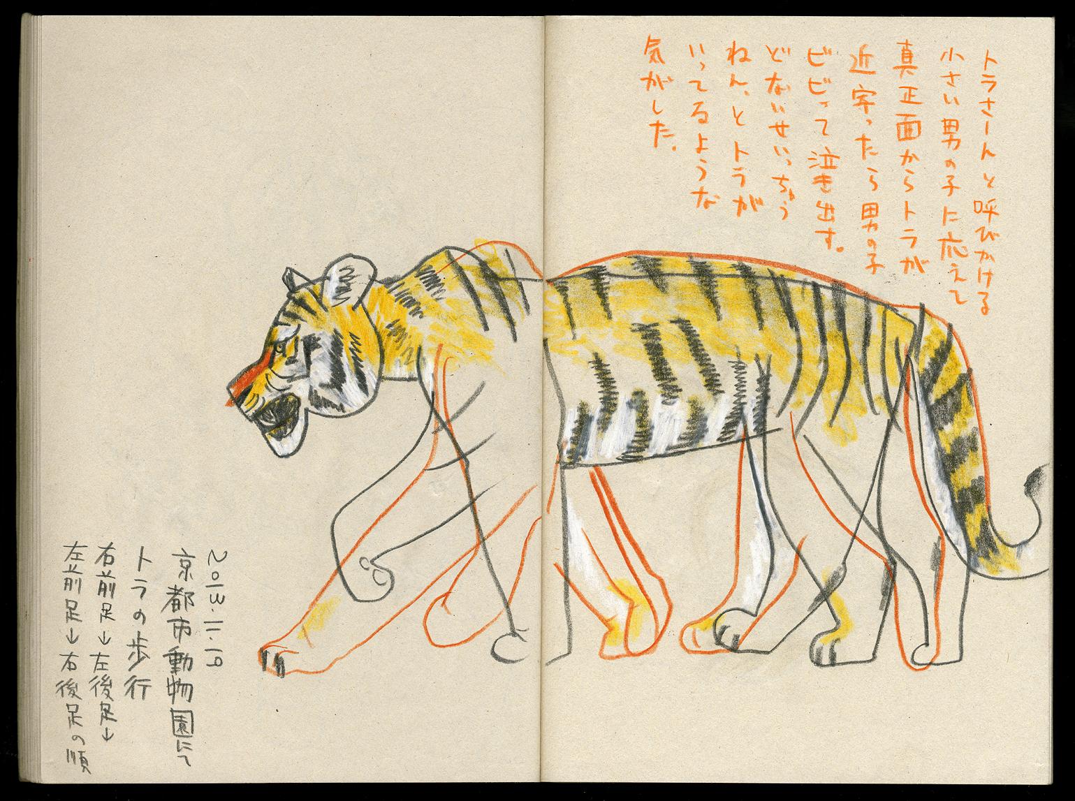 Wallpaper Ilustrasi Harimau Gambar Kartun Kebun Binatang Seni