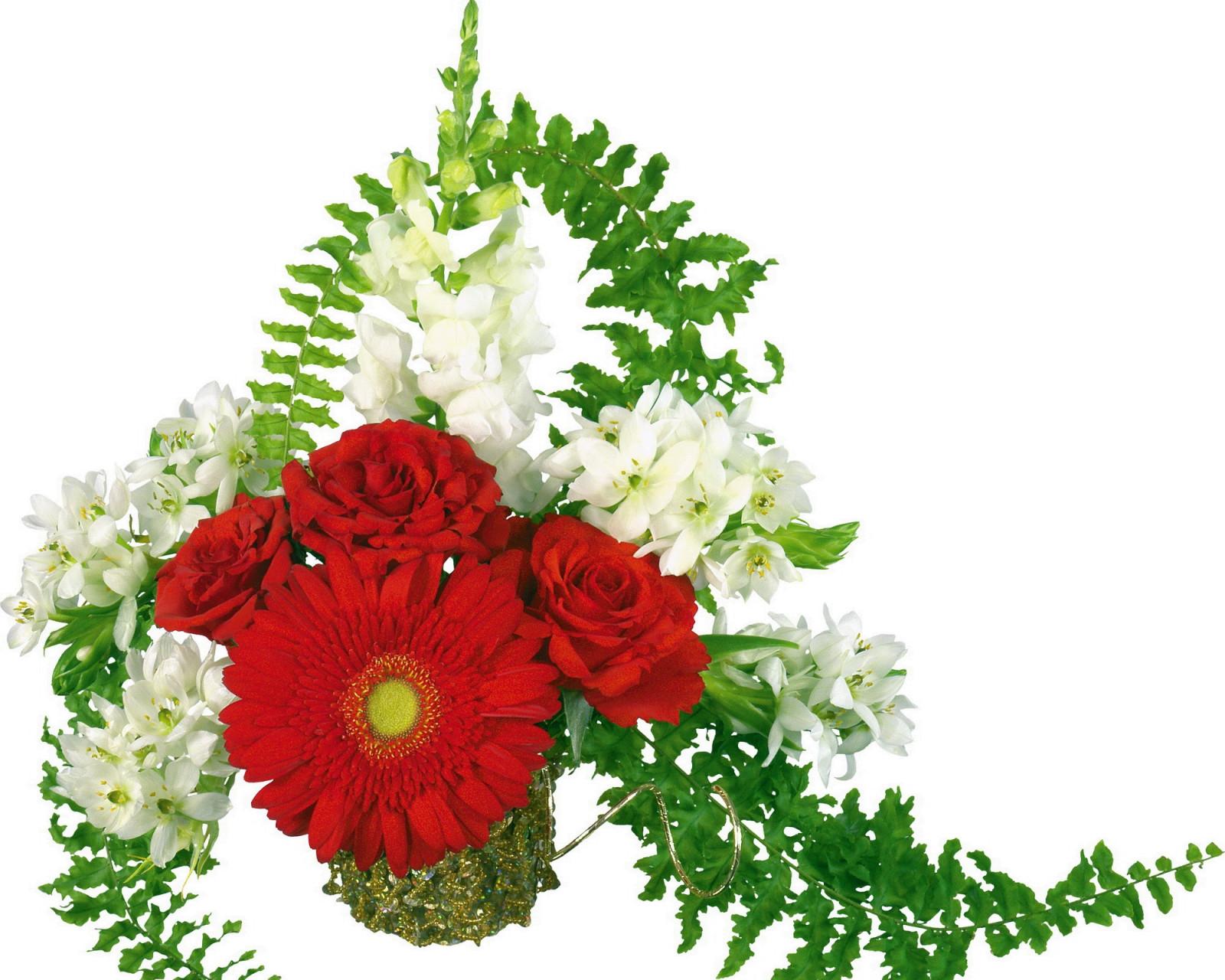 Днем, красивые открытки с живыми цветами к 8 марта