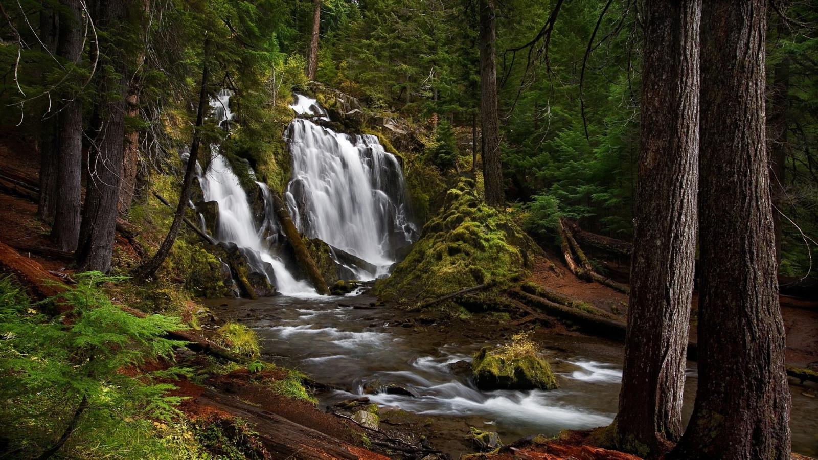 wallpaper waterfall nature river wilderness jungle