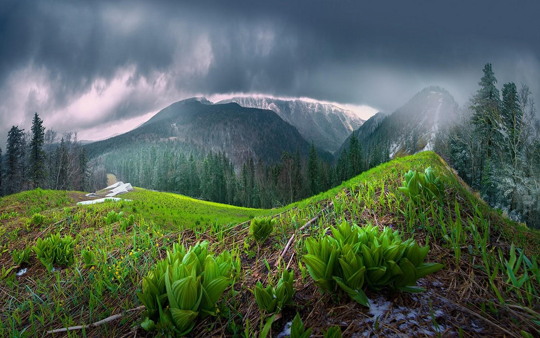 Good Wallpaper Mountain Rain - mist_nature_landscape_spring_mountains_forest_clouds_rain-127612  Pictures_94990.jpg!d