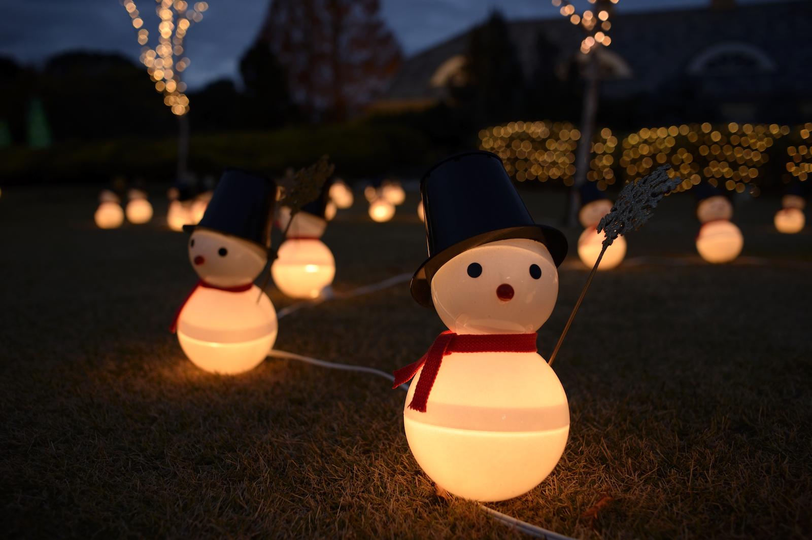 Hintergrundbilder : Nacht-, Schneemann, Nikon, Weihnachten, Urlaub ...