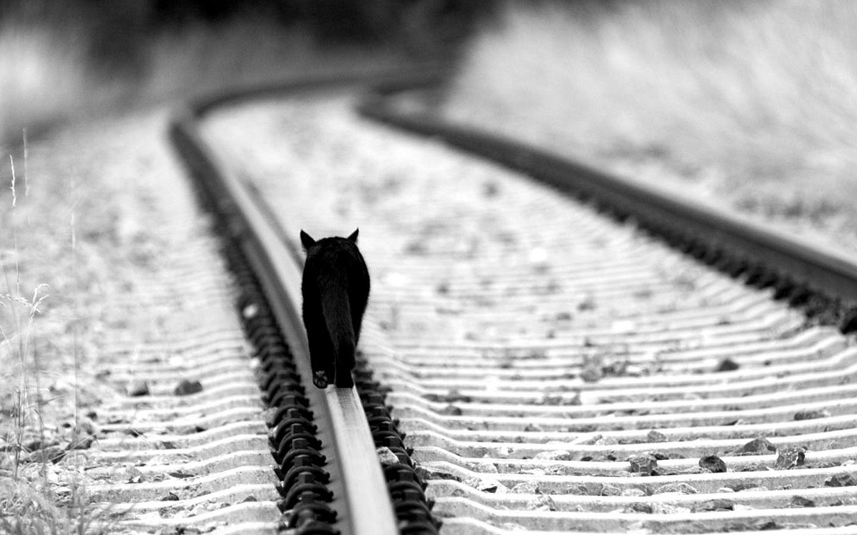 Открытки о грусти и одиночестве, поздравления защитой