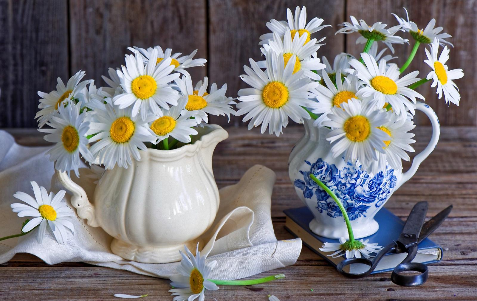 Картинки красивые цветы для настроения, рождением