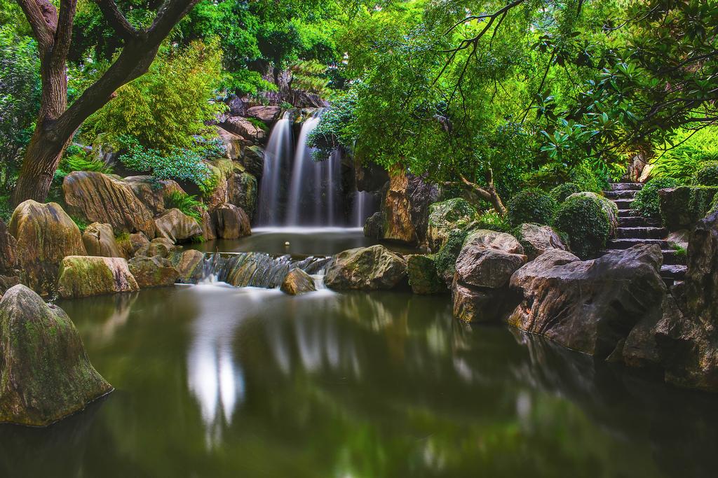 Fond d 39 cran des arbres cascade eau la nature for Sav habitat et jardin